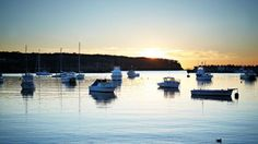 Where to eat and shop: Mollymook and Ulladulla NSW