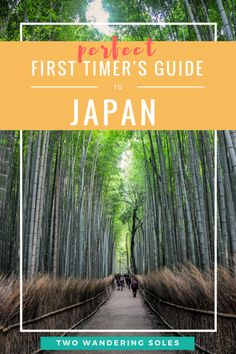 First Time Guide to Japan: Everything you need to know