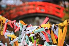 おみくじ カラフル 下鴨神社 縁結び 京都 世界遺産
