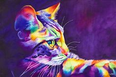 Colorful Abstract Cat Painting | SoftPainting.com