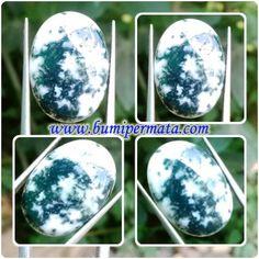 CM218 Batu Akik Natural Dendrite - Khasiati Fosil Rumput