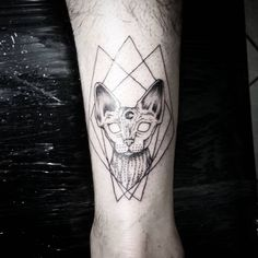 #dkjordao #darkjordao #tattoo #sphynx #cat #solarstudio #blackwork…