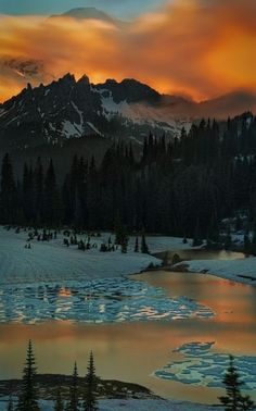 Tipsoo Lake, Washington