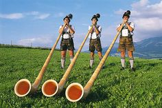 Alphorn - Alpenhorn or alphorn, a wind instrument, consisting of a natural wooden horn of conical bore, having a cup-shaped mouthpiece, used by mountaineers in Switzerland and elsewhere.  The tube is made of thin strips of birchwood soaked in water until they have become quite pliable; they are then wound into a tube of conical form from 4 to 8 ft. long, and neatly covered with bark. A cup-shaped mouthpiece carved out of a block of hard wood is added and the instrument is complete.