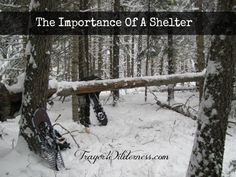 Let's talk about the importance of a shelter… We all live in varying climates, terrain and areas. Some of you may live in the city, in a small town, in the country or in the wilderness as we do. No matter where you are located, the first thing you need to be concerned about in […]