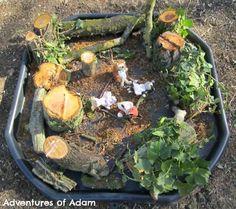 Adventures of Adam Nature Tuff Spot