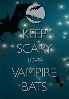 keep scary love vampire bats / created with Keep Calm and Carry On for iOS / #Halloween #VampireBats