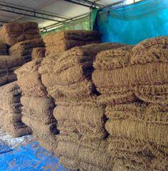 www.trellishorticulture.com/coir-beds.php - At Trellis, we supply a very apt root developing system for plants made of 100% coconut fiber. These plant beds is made of coir textiles on the outside and stuffed with fibers inside gives plants all the comforts to grow.