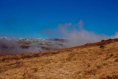 #grass #smoke #smoking #steam