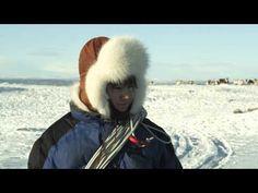 5c649a8c16 Elle Márjá Eira - GUODOHIT (Guođohit-To herd) - YouTube Reindeer