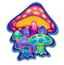mushrooms - Google zoeken