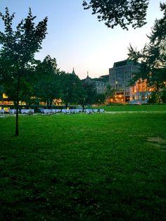 Dolores Park, Street View, Travel, Viajes, Traveling, Trips, Tourism