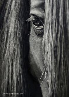Realistic Drawings Hyper-Realistic Scratchboard Illustrations by Cathy Sheeter – Inspiration Grid Most Beautiful Horses, All The Pretty Horses, Animals Beautiful, Painted Horses, Horse Drawings, Realistic Drawings, Art Scratchboard, Horse Artwork, Cute Horses