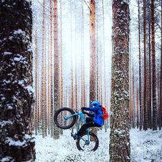 ・・・ First snow and fatbike is a great combo ❄️ Felt Bikes, First Snow, Mountain Biking, Finland, Nikon, Wednesday, Woods, Bicycle, Mtb Bike