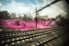 Psychylustro by Katharina Grosse, 2014, one of seven sites along Amtrak's Northeast corridor transformed by the artist. Photo: Steve Weinik, courtesy the City of Philadelphia Mural Arts Program