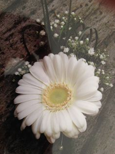 Gerbera and gypsophila buttonhole with hessian string binding by Elisabeth Bemment