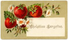free printable digital image design resource ~ Victorian calling card ~ strawberries