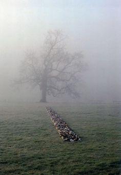 RICHARD LONG  TAME BUZZARD LINE  NEW ART CENTRE ROCHE COURT ENGLAND 2001
