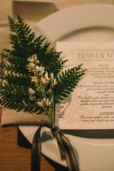 Elegant Ways To Incorporate Ferns Into Your Wedding