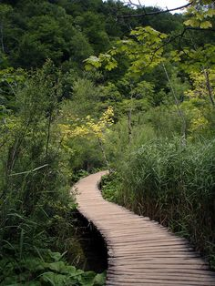 Plitvice Lakes National Park, Croatia by Andrew Ridley Wooden Path, Choose Your Path, Plitvice Lakes National Park, Back Road, Heaven On Earth, Walkway, Garden Paths, Nature Pictures, Pathways