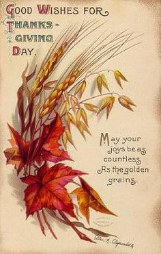 May your joys be as countless as the golden grains. #vintage #Thanksgiving #card