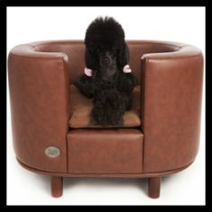 The Chester & Wells Hampton faux leather dog bed is a real classic design and comes in three sizes. Stylish dog beds to suit any room available now Kong Toys, Dog Sofa Bed, Sofa Beds, Designer Dog Beds, Pet Beds, Doggie Beds, Large Dogs, Dog Bowls, The Hamptons