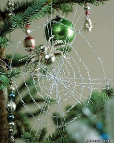 In Ukraine, Christmas tree decorations include a fake spider and web. The spider and web are hidden and the first child to find it will receive good luck for the next year. The story is derived from an old tale where a poor widowed mother could not afford decorations. One morning she awoke to find a spider had beautifully decorated the tree with its web, making for a very happy Christmas
