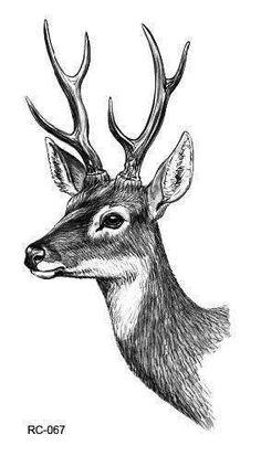 15 Different Color Black Printing Sheep Antelope Tattoo Waterfproof Fake Deer Temporary Fairy Tattoo Sticker For Girls 15 verschiedene Farbe. Deer Drawing, Bunny Drawing, Painting & Drawing, Art Drawings Sketches, Animal Drawings, Pencil Drawings, Sketch Drawing, Sketches Of Animals, Animal Sketches Easy