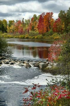 Fall Pictures, Nature Pictures, Pretty Pictures, Beautiful World, Beautiful Places, Pike Lake, Image Nature, Autumn Scenes, Natural Wonders