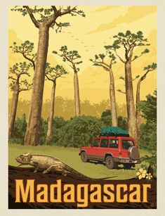 ~ Anderson Design Group Madagascar, Animal Species, Art Icon, Room Posters, Hand Illustration, Vintage Travel Posters, Vintage Signs, Around The Worlds, Art Prints