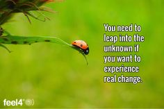 You need to leap into the unknown if you want to experience real change.
