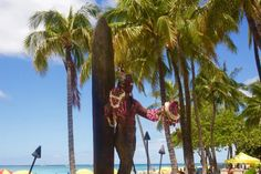 Oahu Island Guide: What do to during Seven Days on Oahu