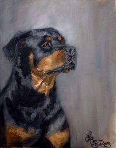 Dog Portrait -  Lydia Rose Fine Art - #rottweiler - Lydia Rose Spencer