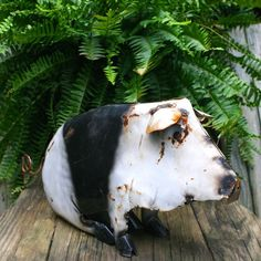 Big Spotted Pigs with personality bring rustic charm to urban spaces. Deemed junkyard pigs, they're fantastic garden art, whimsical decor for inside too! Expressive critter with eyelashes, big ears an