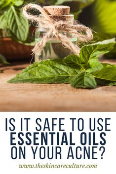 """Die-hard naturopaths will convince you with all they have and swear that essential oils work better than other """"chemicals"""" as they like to call them. However, is this the truth? Are you really a few drops of essential oil away from achieving clear skin? Can you safely use essential oils on acne? Or is it all just a big fat marketing lie? Clear Skin Routine, Cystic Acne Remedies, Clear Skin Diet, Acne Solutions, Plant Therapy, Therapeutic Grade Essential Oils, How To Get Rid Of Acne, How To Treat Acne, Die Hard"""