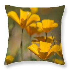 "Poppies  Throw Pillow 14"" x 14"""