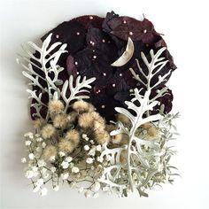 Изящные картины из цветов от флориста Бриджет Коллинз « FotoRelax