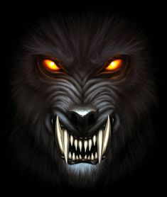 Find Angry Werewolf Face Darkness Digital Painting stock images in HD and millions of other royalty-free stock photos, illustrations and vectors in the Shutterstock collection. Wolf Wallpaper, Skull Wallpaper, Animal Wallpaper, Werewolf Tattoo, Werewolf Art, Werewolf Vs Vampire, Angry Wolf, Angry Animals, Wolf Images