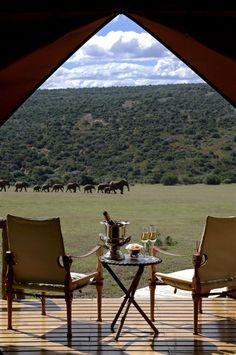 Gorah Elephant Camp - Addo National Elephant Park close to Port Elizabeth in the Eastern Cape.