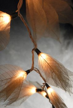 Enjoy the soft radiance of this naturally delicate strand. The Skeleton Leaf Flower String Lights are shaded ivory, and will compliment mos.