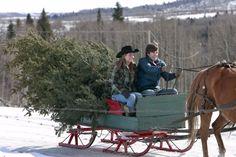 "Real Shaun Johnston on Twitter: ""Have you put your #ChristmasTree up yet? #TeamSj #GrandpaJack #Heartland… """