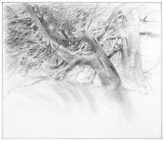 Albrecht Rissler's Drawing Landscape: Drawing with charcoal on canvas Land Art, Tree Art, Pencil Drawings, Charcoal, Landscape, Portrait, Drawing Tips, Canvas, Wolves