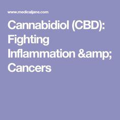 Cannabidiol (CBD): Fighting Inflammation & Cancers