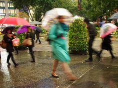 A Dance of Umbrellas at Herald Square, New York City Herald Square, Rain, Dance, Summer, Rain Fall, Dancing, Summer Time, Waterfall