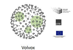 Rhino News, etc.: Volvox - Point Cloud editing - New version