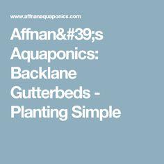 Affnan's Aquaponics: Backlane Gutterbeds - Planting Simple
