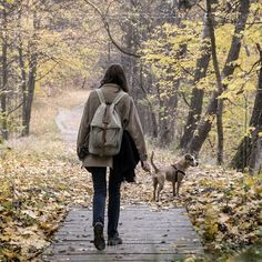 """""""They motivate us to play, be affectionate, seek adventure and be loyal. Tom Hayden, Pet Health, Bradley Mountain, Monday Motivation, Dog Love, Play, Adventure, Quotes, Nature"""
