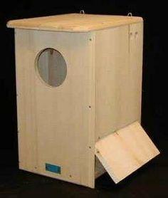 Gloryhole box