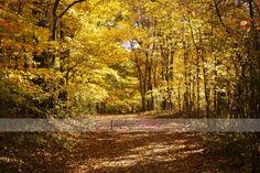 Eagle Creek Park - Indianapolis, IN