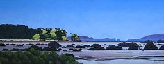 Catching the Sunlight - Coramandel - Jane Puckey - Art Rentals and Hire in New Zealand
